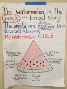 watermelon - seeds